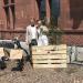 Hochzeit von Hr. Kortmann und Fr. Stratmann